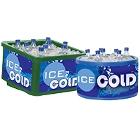 Countertop Ice Bin Merchandisers / Coolers