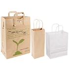 Paper Shopping Bags with Handles
