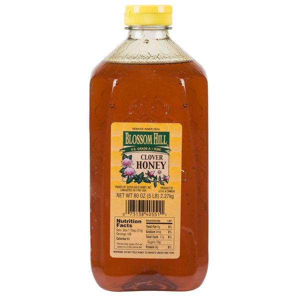 Dutch Gold 5 lb. Blossom Hill Clover Honey