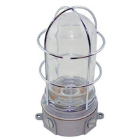 All Points 38-1322 Junction Box Light Fixture; Plastic Coated Glass Globe; Wire Guard