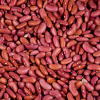 Dried Light Red Kidney Beans - 20 lb.