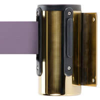 Brass Wall-Mount Stanchion with 10' Purple Retractable Belt