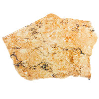 Elite Global Solutions QS2316 Rocky Mountain High Rust Granite 23 inch x 16 inch Irregular Shape Display Stone Platter