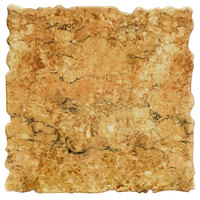 Elite Global Solutions QS2424 Rocky Mountain High Rust Granite 23 3/4 inch Square Shape Riser Platter