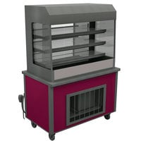 Delfield ASM-48 48 inch Drop-In Refrigerated Horizontal Air Curtain Merchandiser - 11.3 cu. ft.