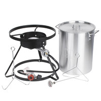 Backyard Pro Weekend Series 30 Qt. Turkey Fryer Kit with Aluminum Stock Pot and Accessories