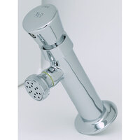 T&S B-0800 Slow Self Closing Push Button Lavatory Metering Faucet with Rose Spray ADA Compliant