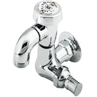 T&S B-0720 Single Sink Faucet with 1/2 inch NPT Female Flanged Inlet, Atmospheric Vacuum Breaker, 3/4 inch Garden Hose Outlet, and Loose Key Shut Off Valve