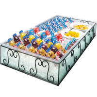 Cal-Mil 413-24-13 Glacier Ice Housing with Clear Pan - 48 inch x 24 inch x 8 inch