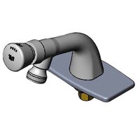 T&S B-0806-VR Vandal Resistant Single Temperature Deck Mount Metering Faucet with Push Button Cap and Deck Plate