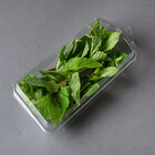 Hook Top Large Clamshell Herb Pack - 500/Case