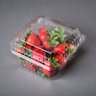 1 Qt. Vented Clamshell Produce / Berry Container   - 250/Case