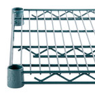 Regency Space Solutions NSF Epoxy Green Wire Shelving and Posts