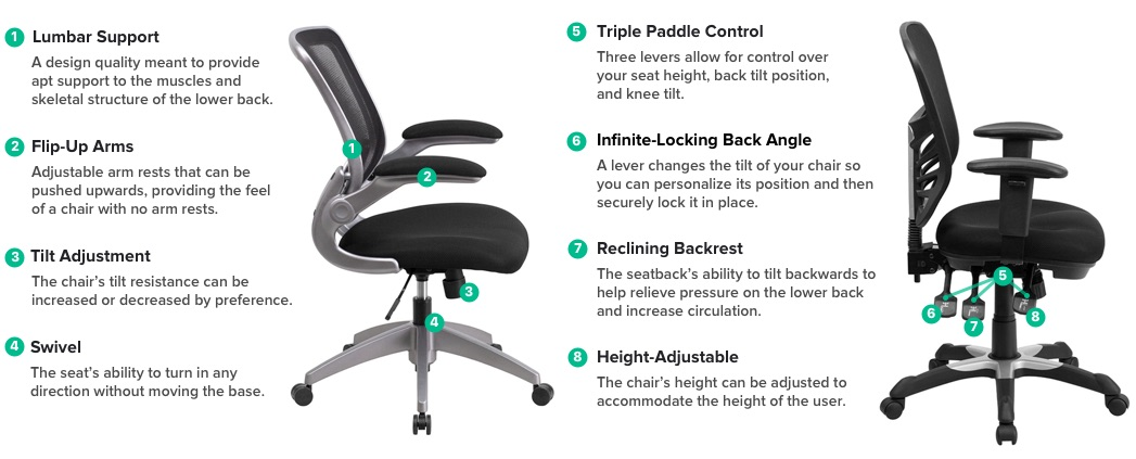 Types of Office Chairs : office chair diagram sidebyside For Office Chair Ergonomic <strong>Lumbar Back Support</strong> from www.webstaurantstore.com size 1047 x 423 jpeg 60kB